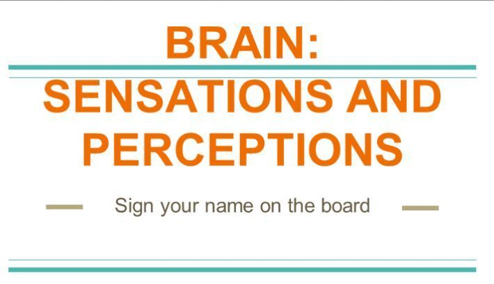 Brain sensations and perceptions experience day board